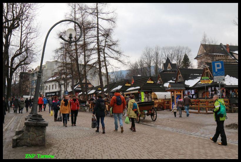 Oglądasz obraz z artykułu: Wypoczynek z ZNP w Tatrach.