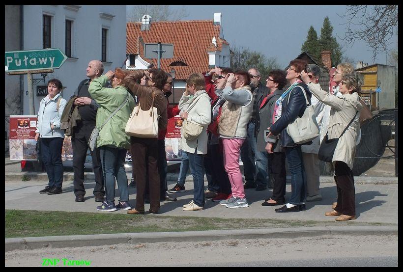 Oglądasz obraz z artykułu: Wędrowali po Kazimierzu Dolnym.